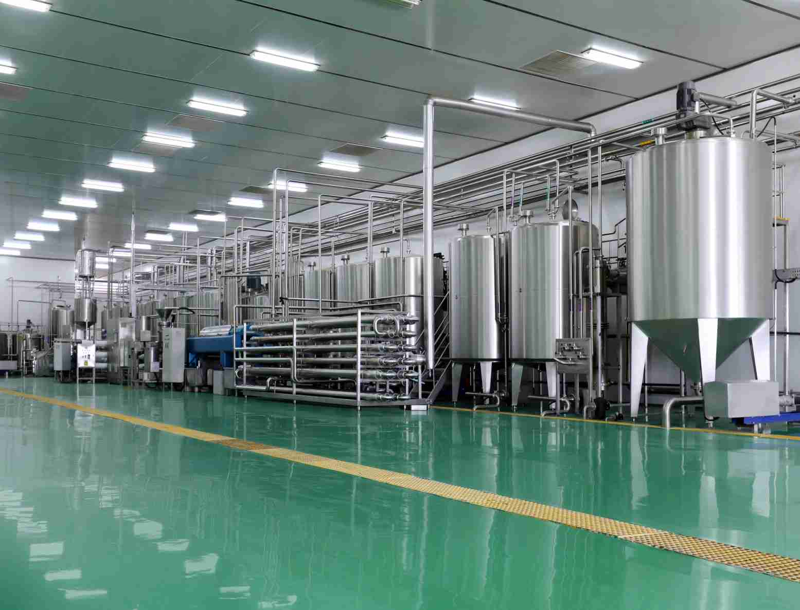 Factory-display-of-the-commercial-yogurt-processing-plant